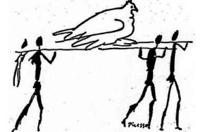 Taube auf Trage
